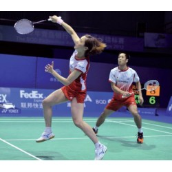 Red Badminton sencilla